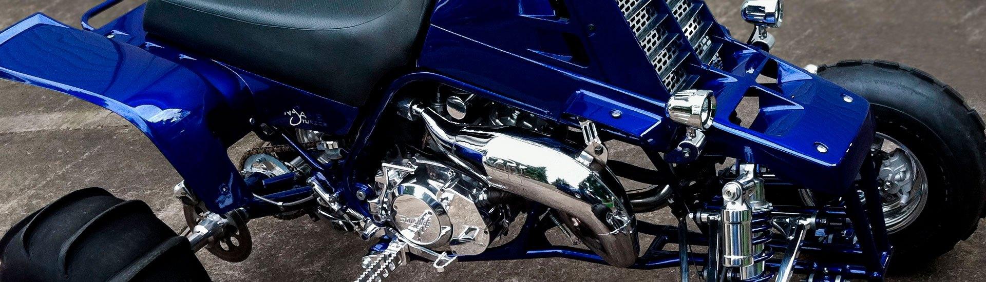 Honda Gas Cap /& Breather Tube TRX90 TRX250 TRX350 TRX420 TRX500 Rancher  Recon